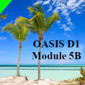 OASIS_DFE
